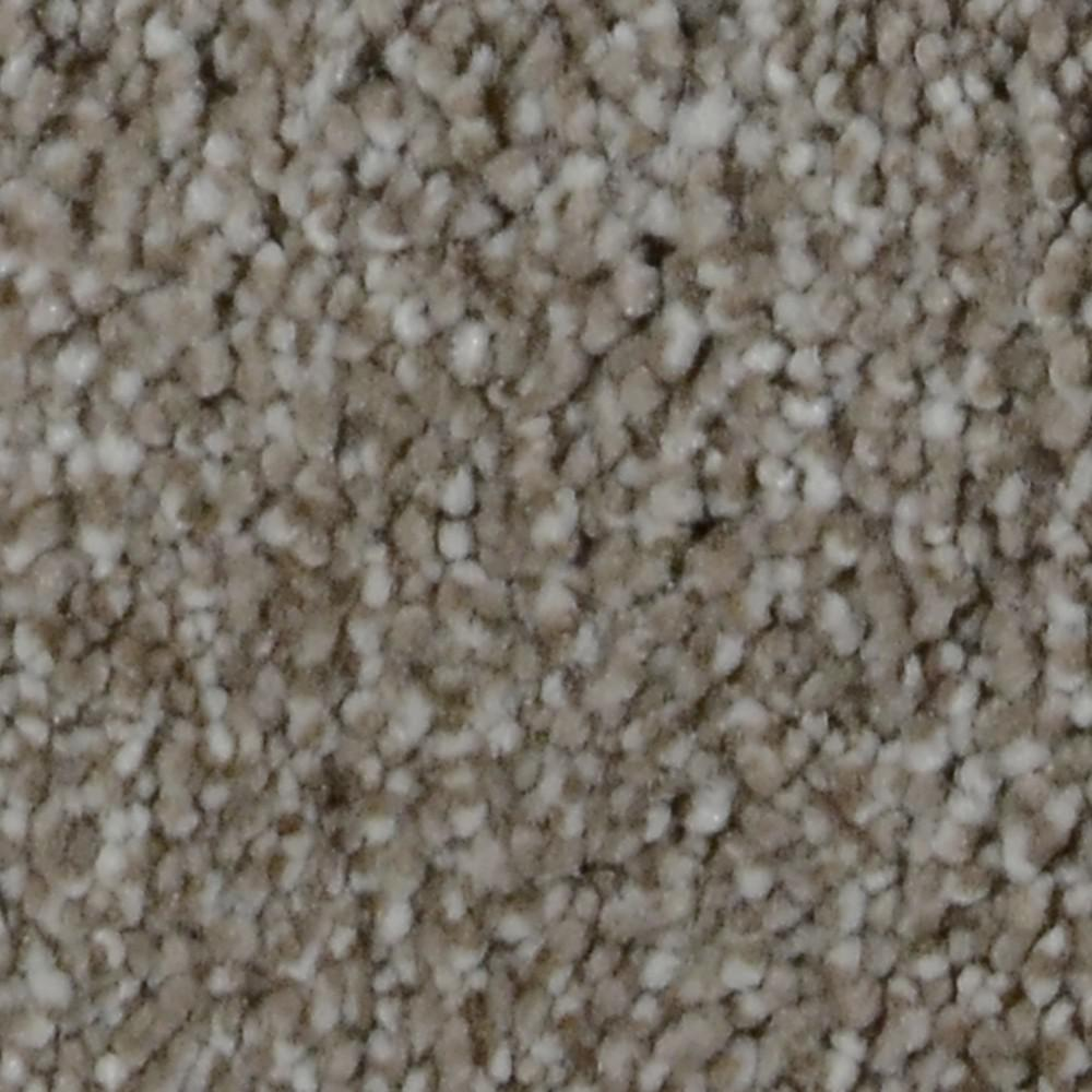 Carpet Sample - Harvest I - Color Chase Texture 8 in.