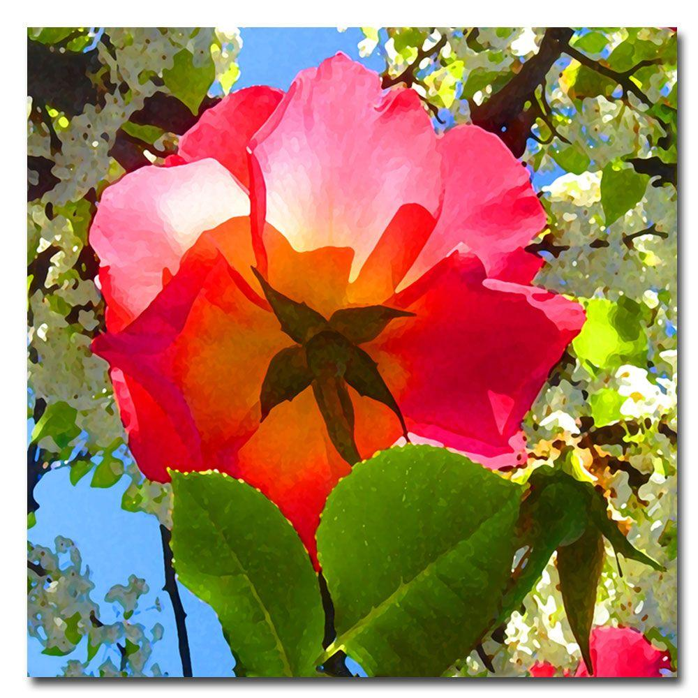 Trademark Fine Art 24 in. x 24 in. Rose Under Tree