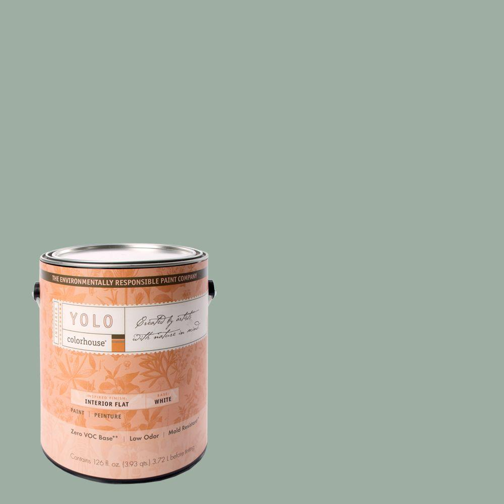 YOLO Colorhouse 1-gal. Water .06 Flat Interior Paint-DISCONTINUED