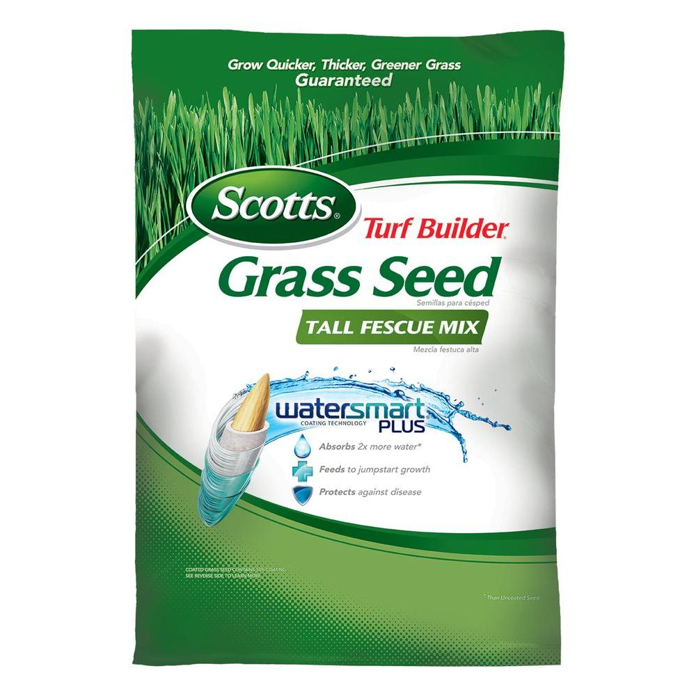 Turf Builder 20 lb. Tall Fescue Mix Grass Seed