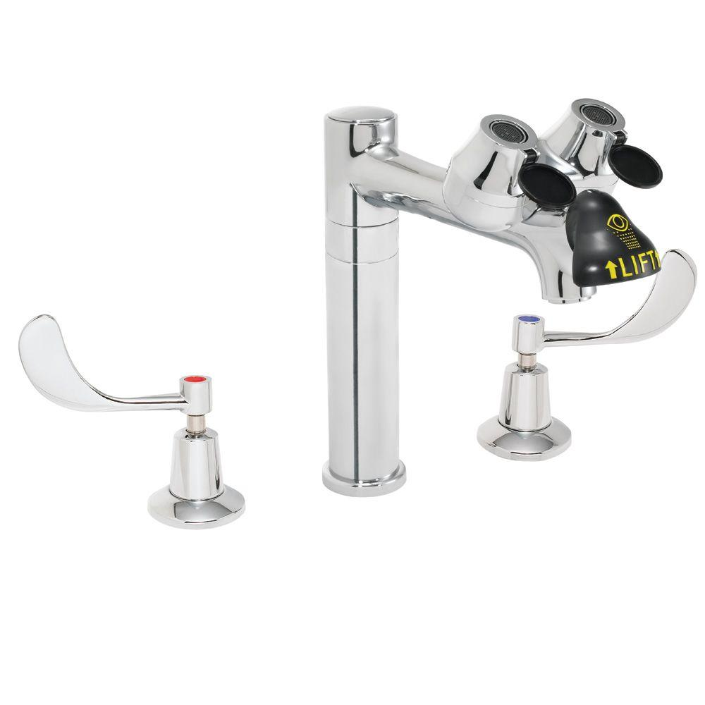 Eyesaver 8 in. 2-Handle Laboratory Faucet with Eye/Face Wash in Polished