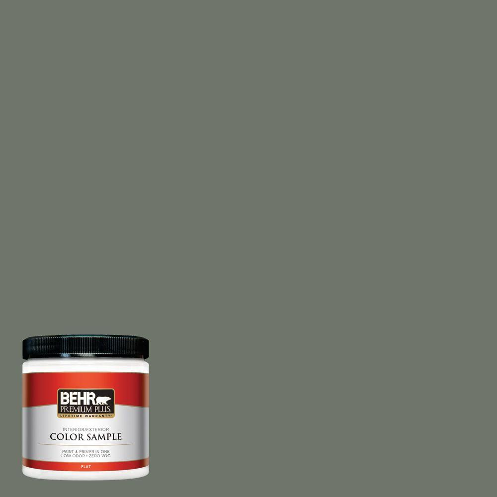 8 oz. #BXC-72 Evergreen Trail Interior/Exterior Paint Sample