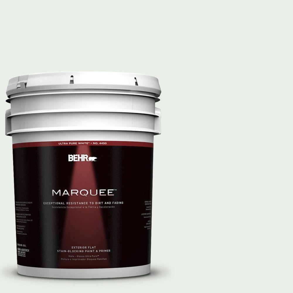 5-gal. #440C-1 Cool White Flat Exterior Paint