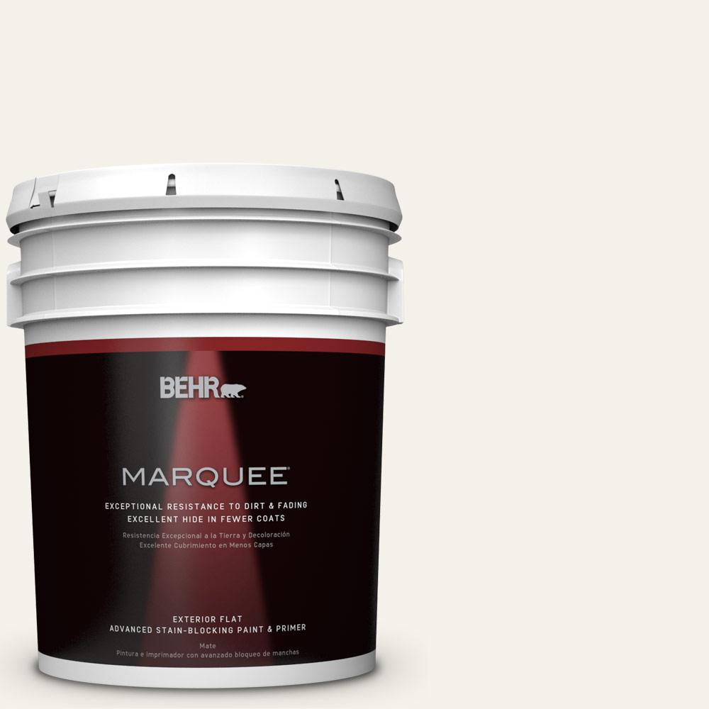 Home Decorators Collection 5-gal. #PPU18-7 Falling Snow Flat Exterior Paint