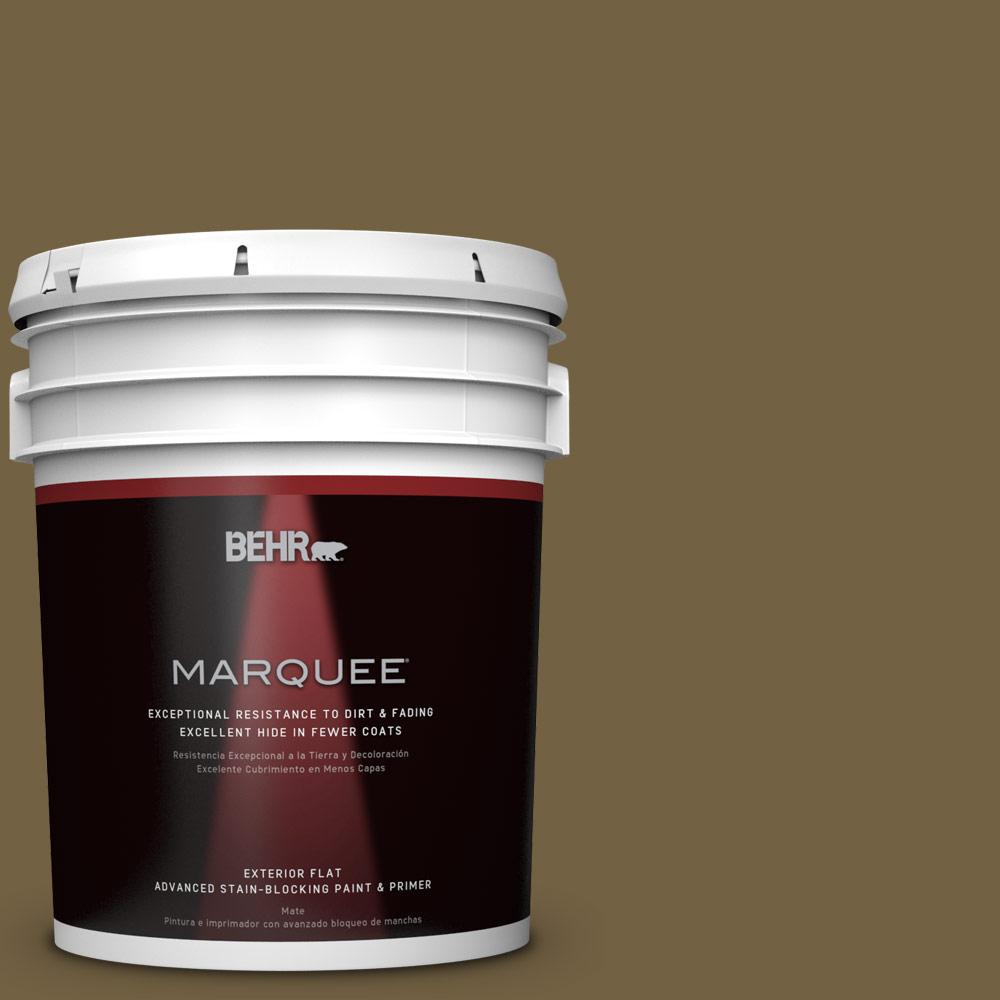 BEHR MARQUEE 5-gal. #PPU7-2 Tree Swing Flat Exterior Paint