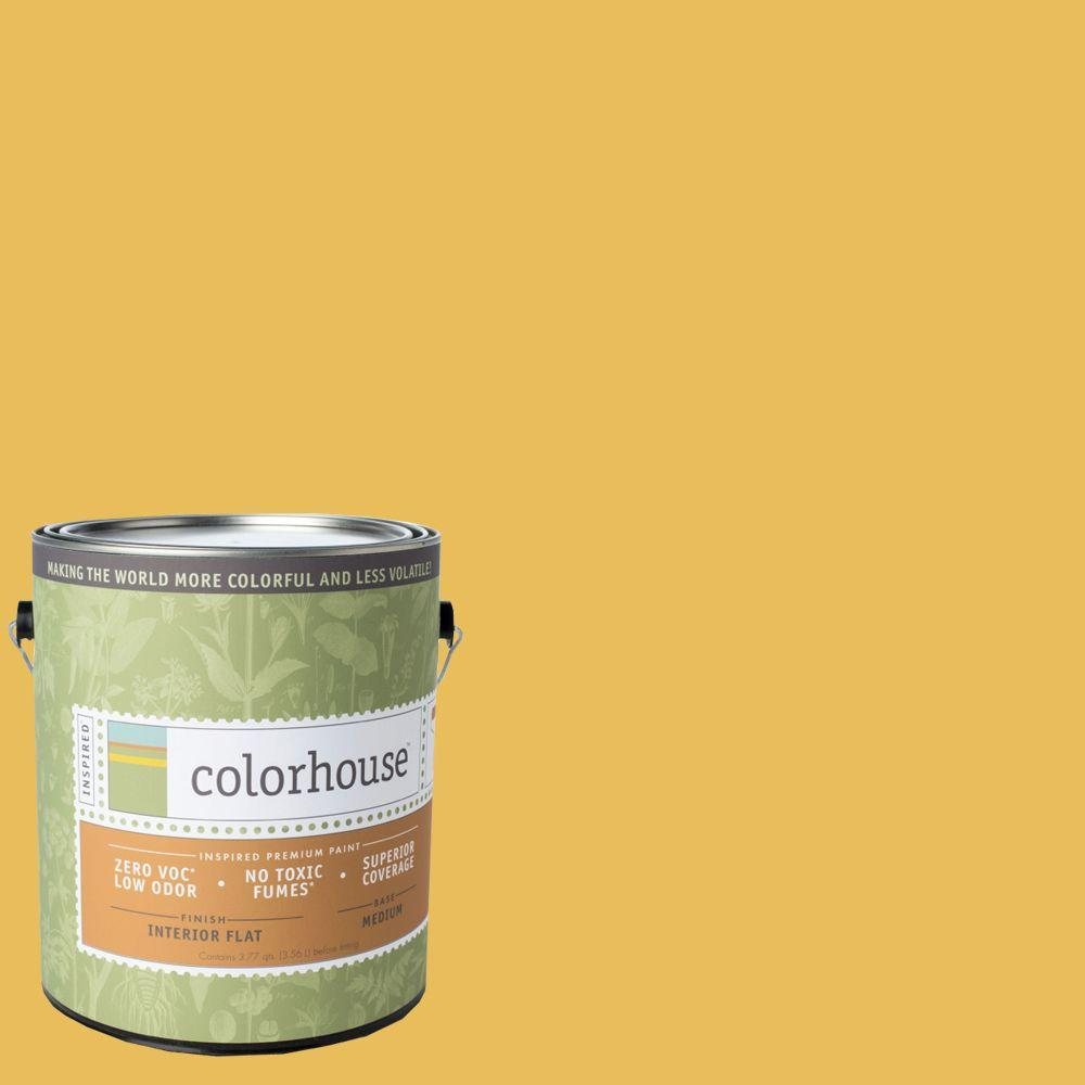 Colorhouse 1-gal. Aspire .05 Flat Interior Paint-481152 - The Home Depot