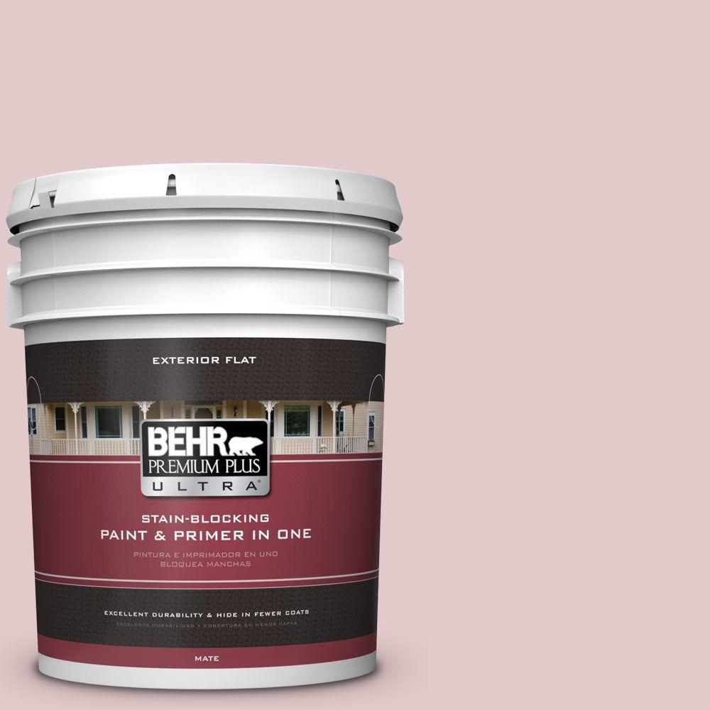 5-gal. #160E-2 Pink Water Flat Exterior Paint