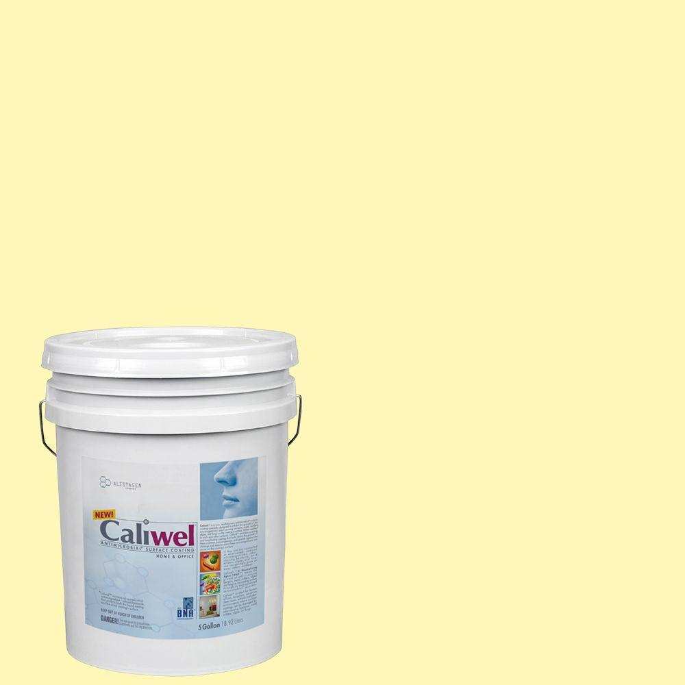 Interior Paint, Exterior Paint & Paint Samples: Caliwel Home & Office Paint 5 gal. Peaceful Glow Yellow Latex Premium Antimicrobial and Anti-Mold Interior Paint FLAT 850856m