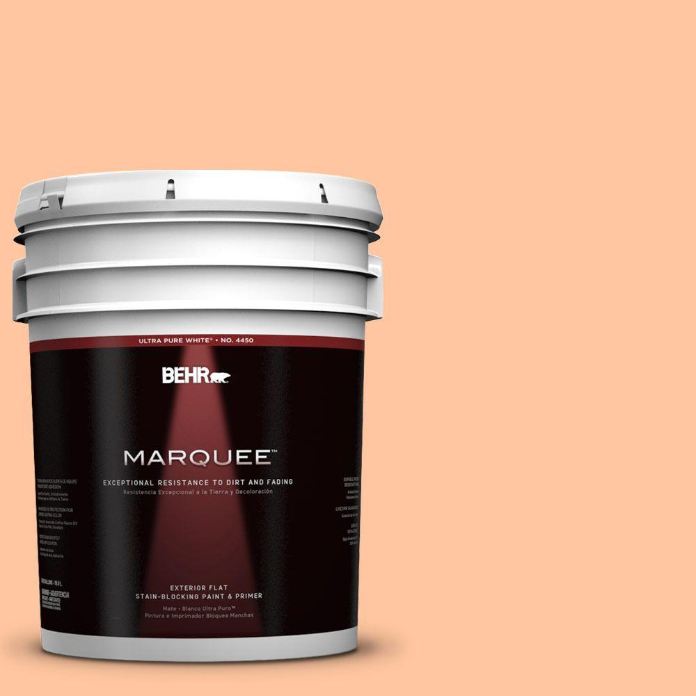 BEHR MARQUEE 5-gal. #260B-4 Orange Sherbet Flat Exterior Paint-445405 - The