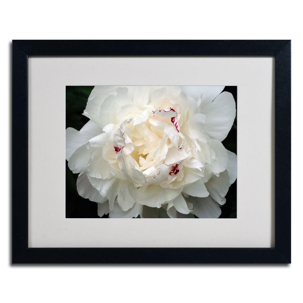 null 16 in. x 20 in. Perfect Peony Black Framed Matted Art