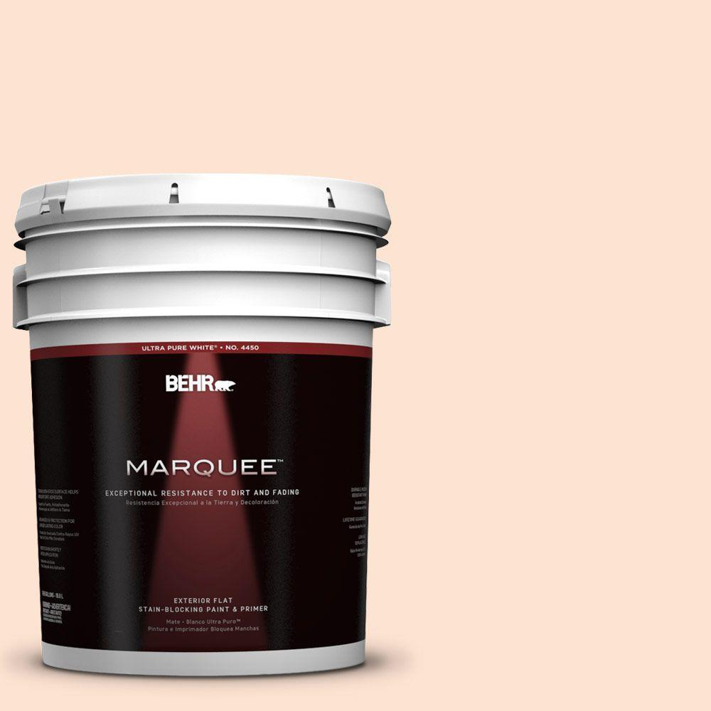 BEHR MARQUEE 5-gal. #280C-1 Champagne Ice Flat Exterior Paint-445005 - The