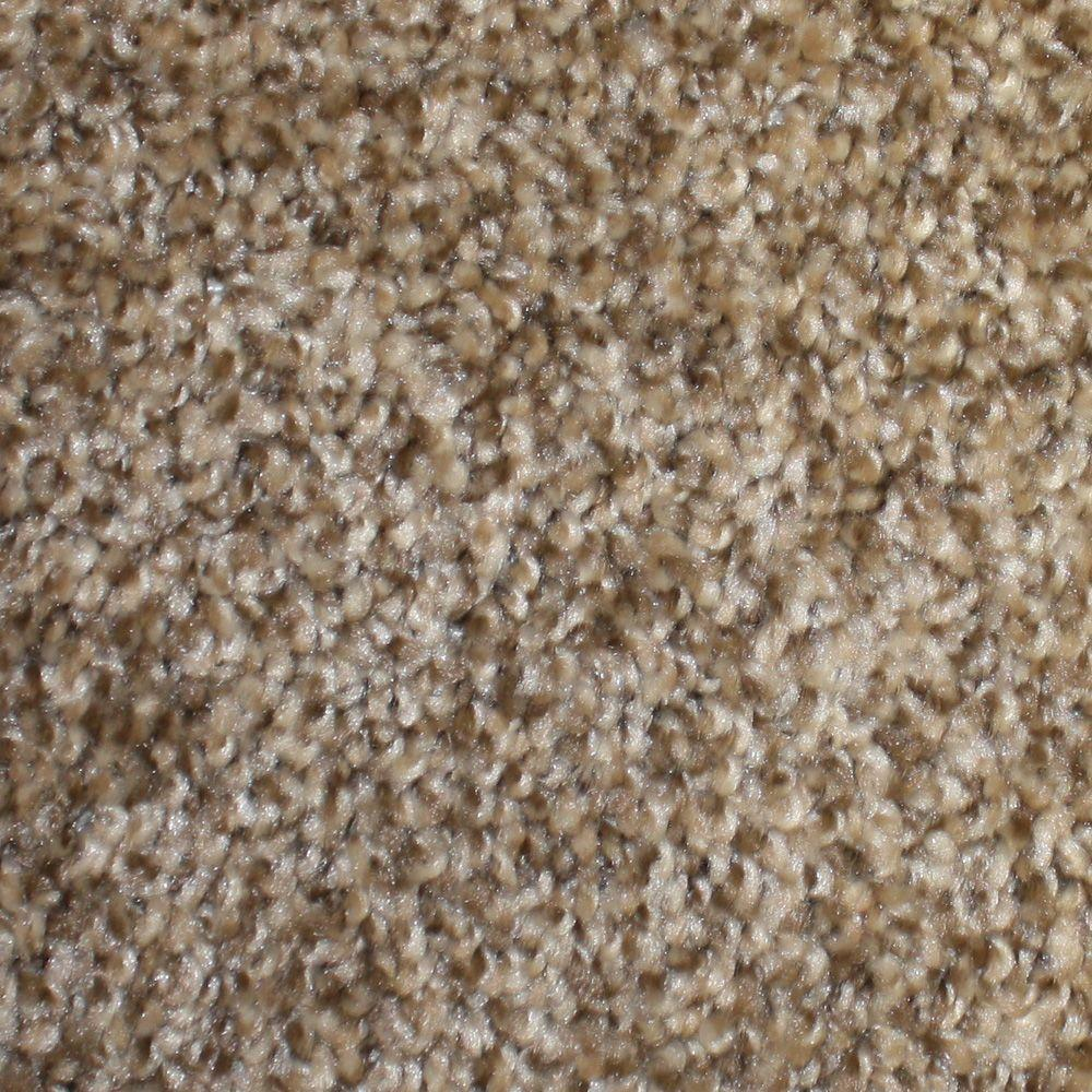 TrafficMASTER First Base - Color Ace 12 ft. Carpet-HD017-10 - The