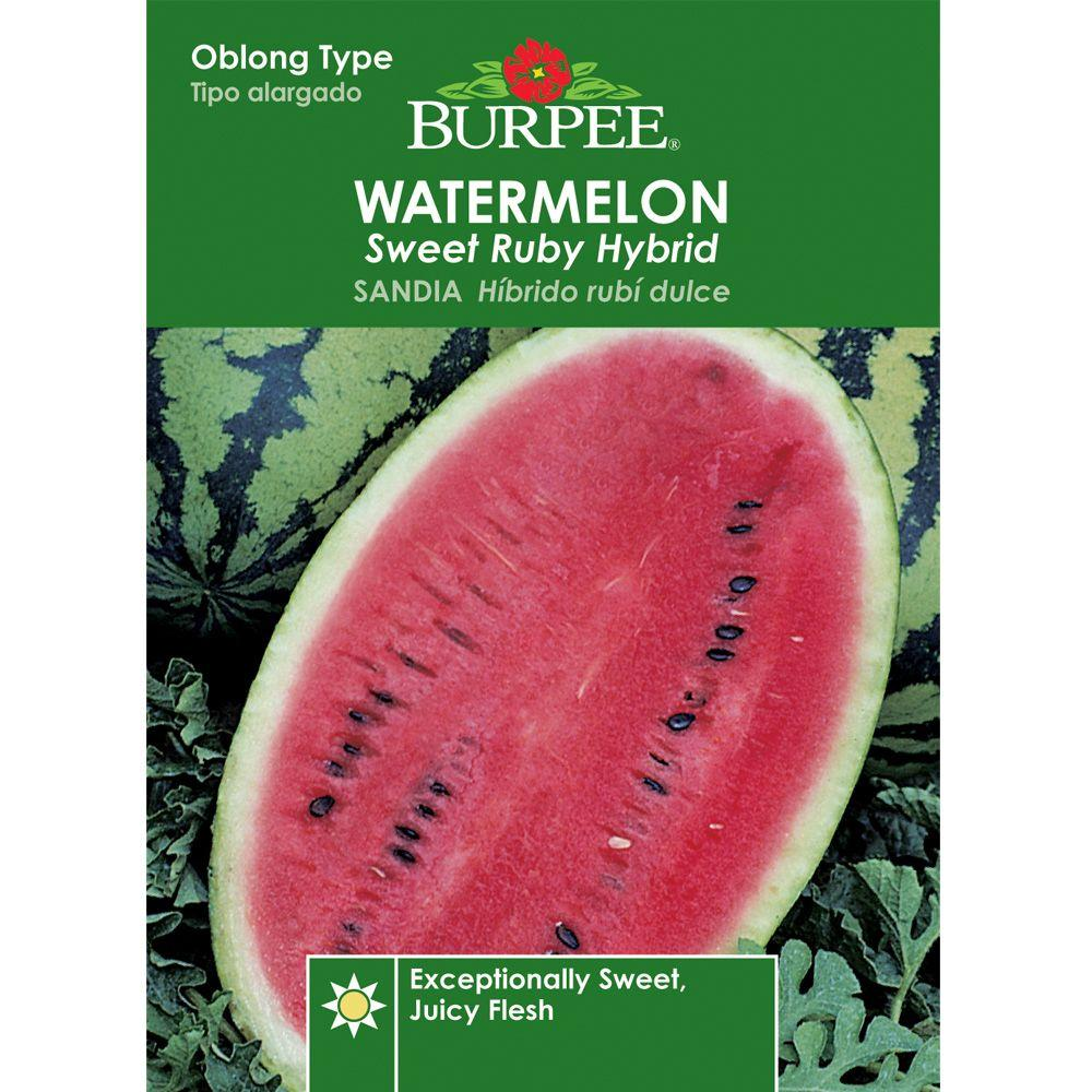 Burpee Watermelon, Sweet Ruby Hyb-63929 - The Home Depot