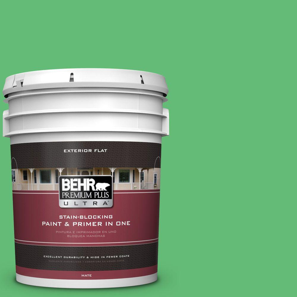 BEHR Premium Plus Ultra 5-gal. #450B-5 Lady Luck Flat Exterior Paint