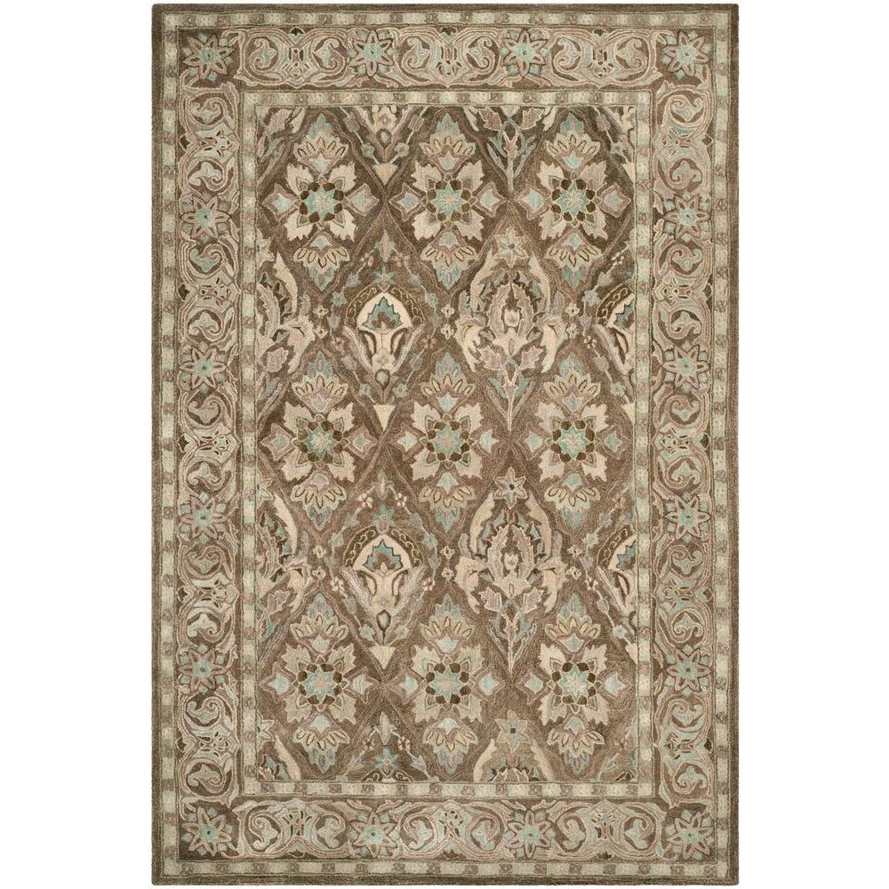 Anatolia Brown/Beige 4 ft. x 6 ft. Area Rug