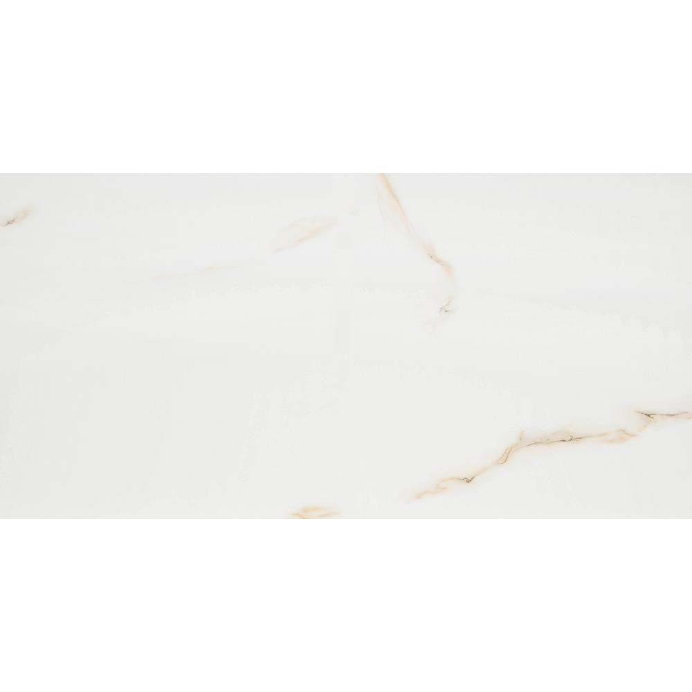 Aria Bianco 12 in. x 24 in. Polished Porcelain Floor and