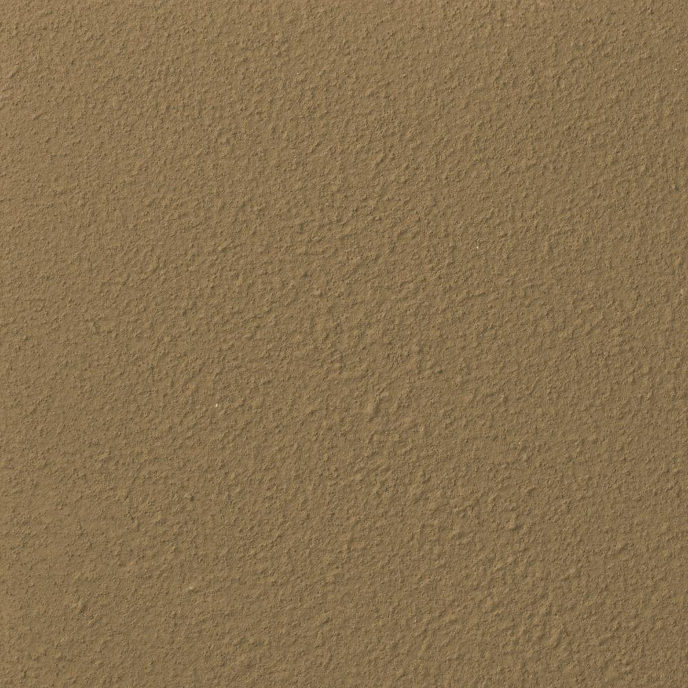 Ralph Lauren 13 in. x 19 in. #RR138 Greenstone River Rock Specialty Paint Chip Sample