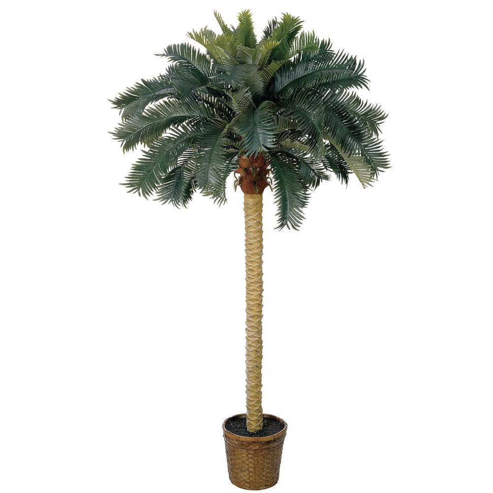 Nearly Natural 6 ft. Sago Palm Silk Tree-5107 - The Home