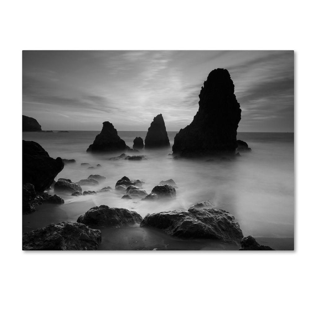 Trademark Fine Art 14 in. x 19 in. Rodeo Beach I Black and White Canvas Art