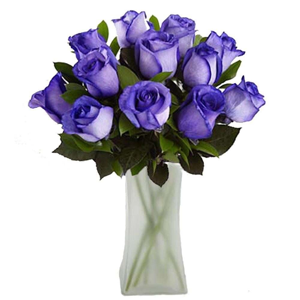 The Ultimate Bouquet Gorgeous Deep Purple Rose Bouquet in Clear Vase (12 Stem) Overnight Shipping Included