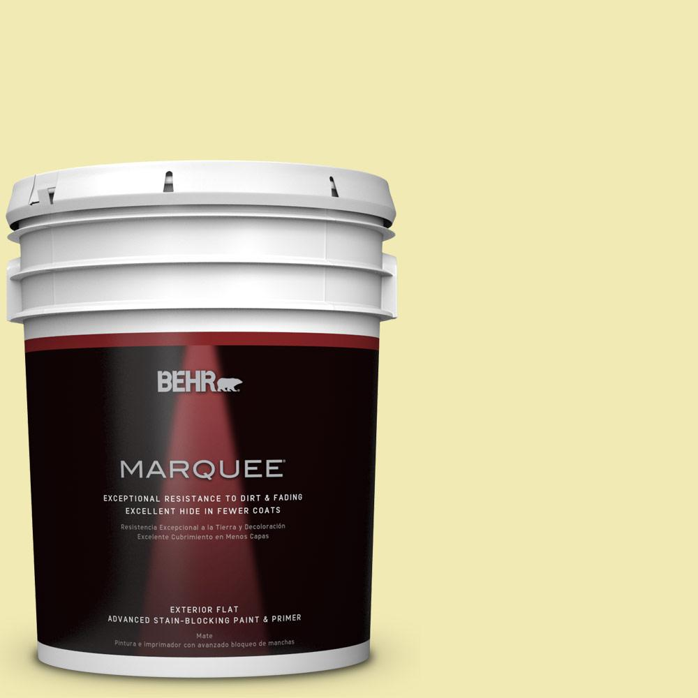 BEHR MARQUEE 5-gal. #P340-2 Invigorating Flat Exterior Paint-445005 - The Home