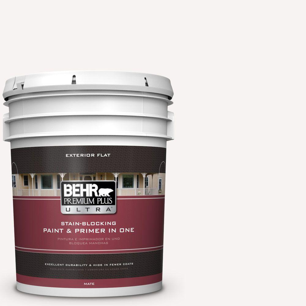 5-gal. #730A-1 Smart White Flat Exterior Paint