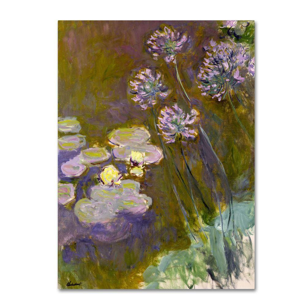 Trademark Fine Art 14 in. x 19 in. Waterlilies and Agapanthus
