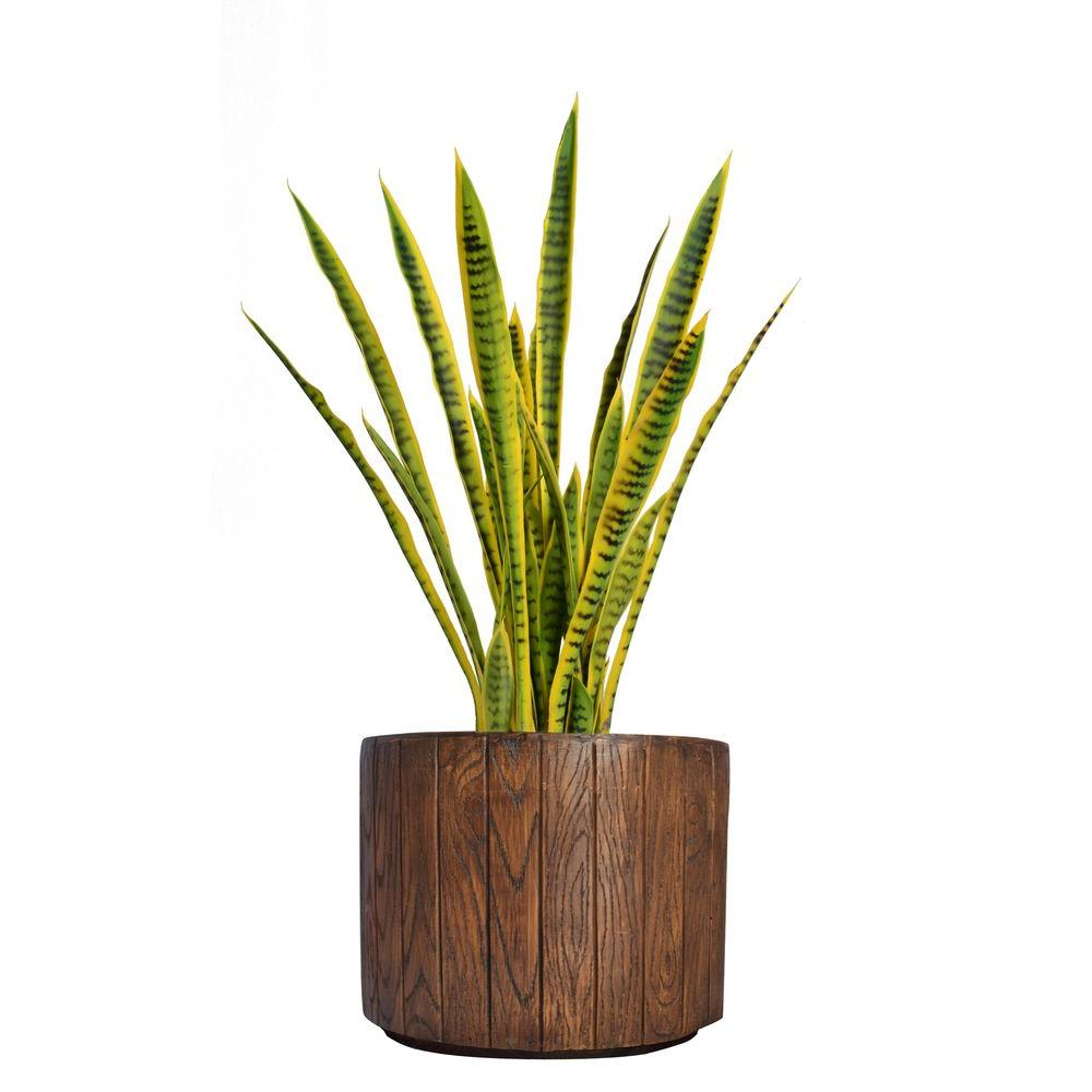 Laura Ashley 40 in. Tall Snake Plant in Planter-VHX121202 - The