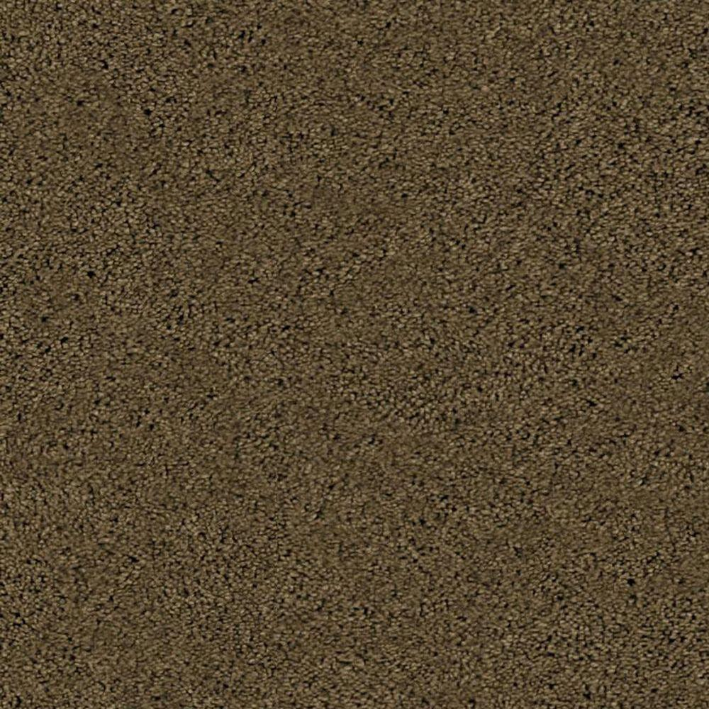 TrafficMASTER Visionary - Color Mountain Trail 12 ft. Carpet
