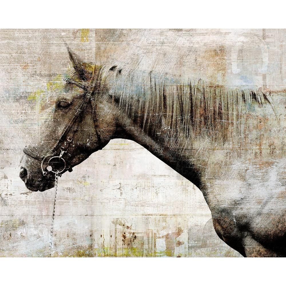 "50 in. x 40 in. ""Lonely Steed"" by Sofia Fox Gallery"