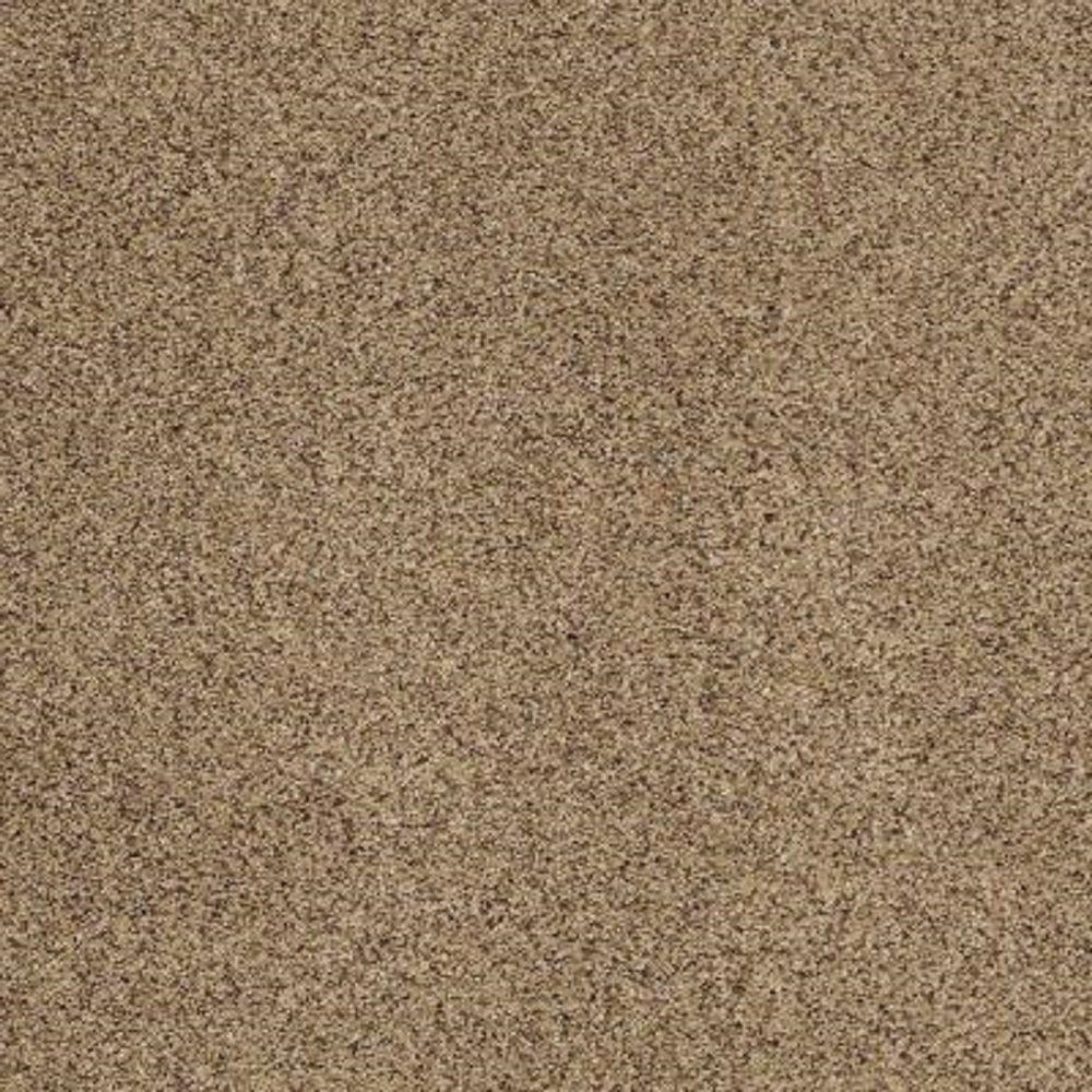 carpet sample heavenly ii color wheat texture 8 in x 8 in