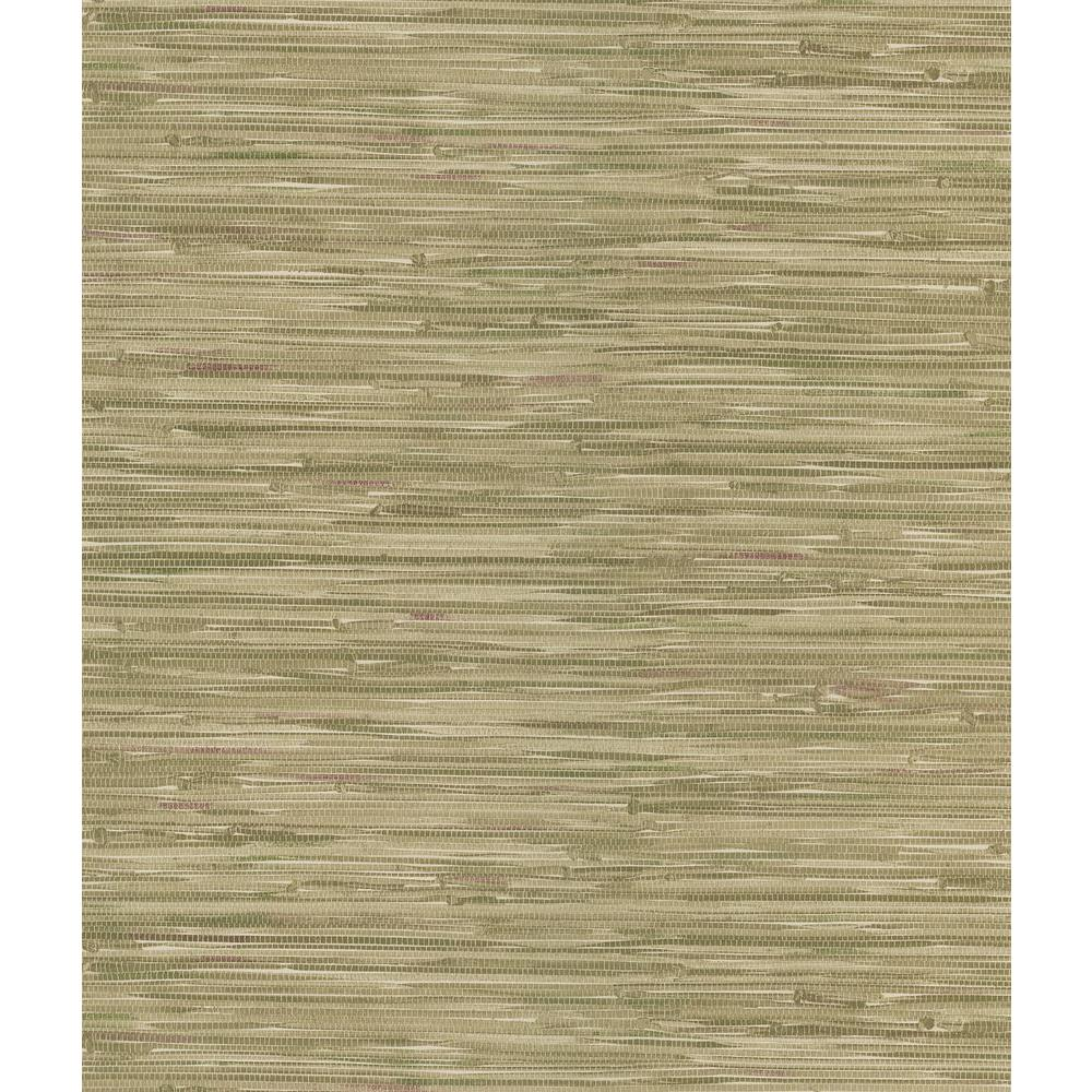 National Geographic 8 in. W x 10 in. H Grasscloth Wallpaper Sample-DISCONTINUED