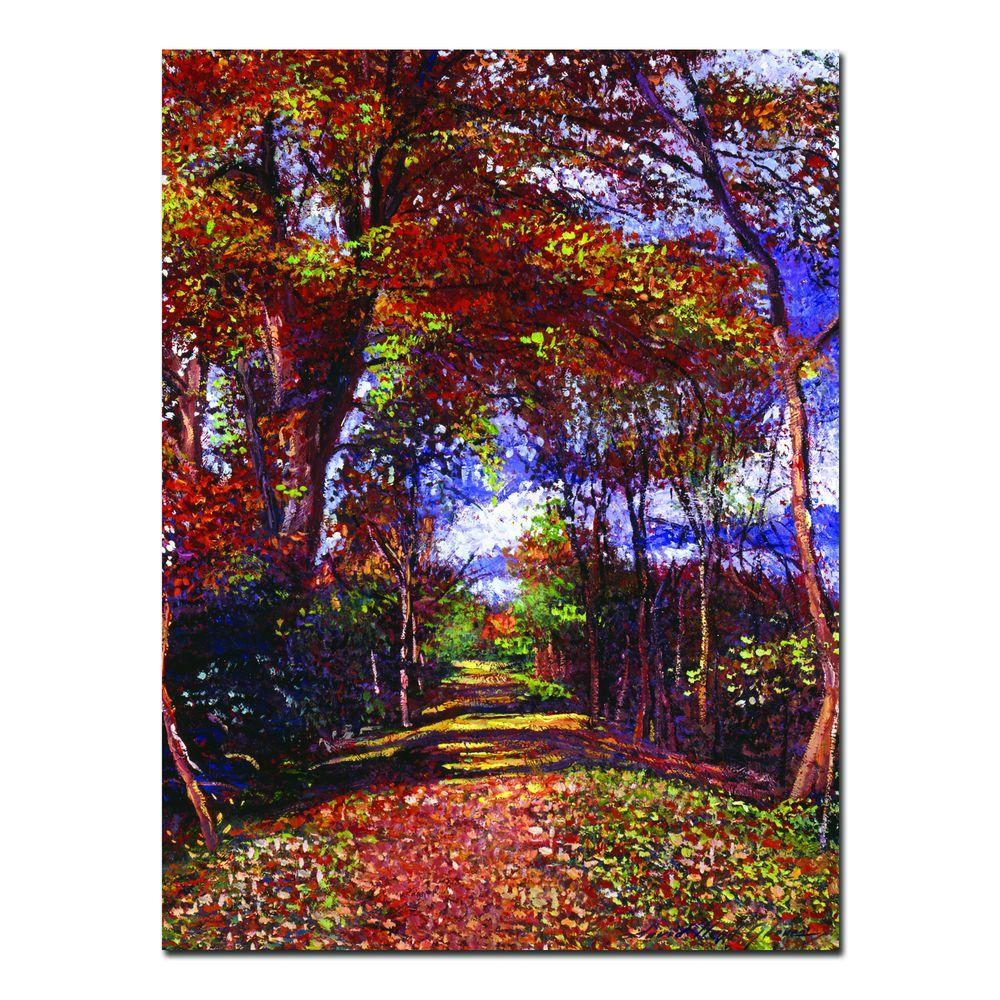 26 in. x 32 in. Autumn Colored Road Canvas Art