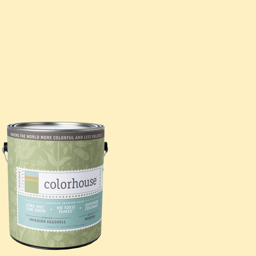 Gal Interior House Paint Eggshell