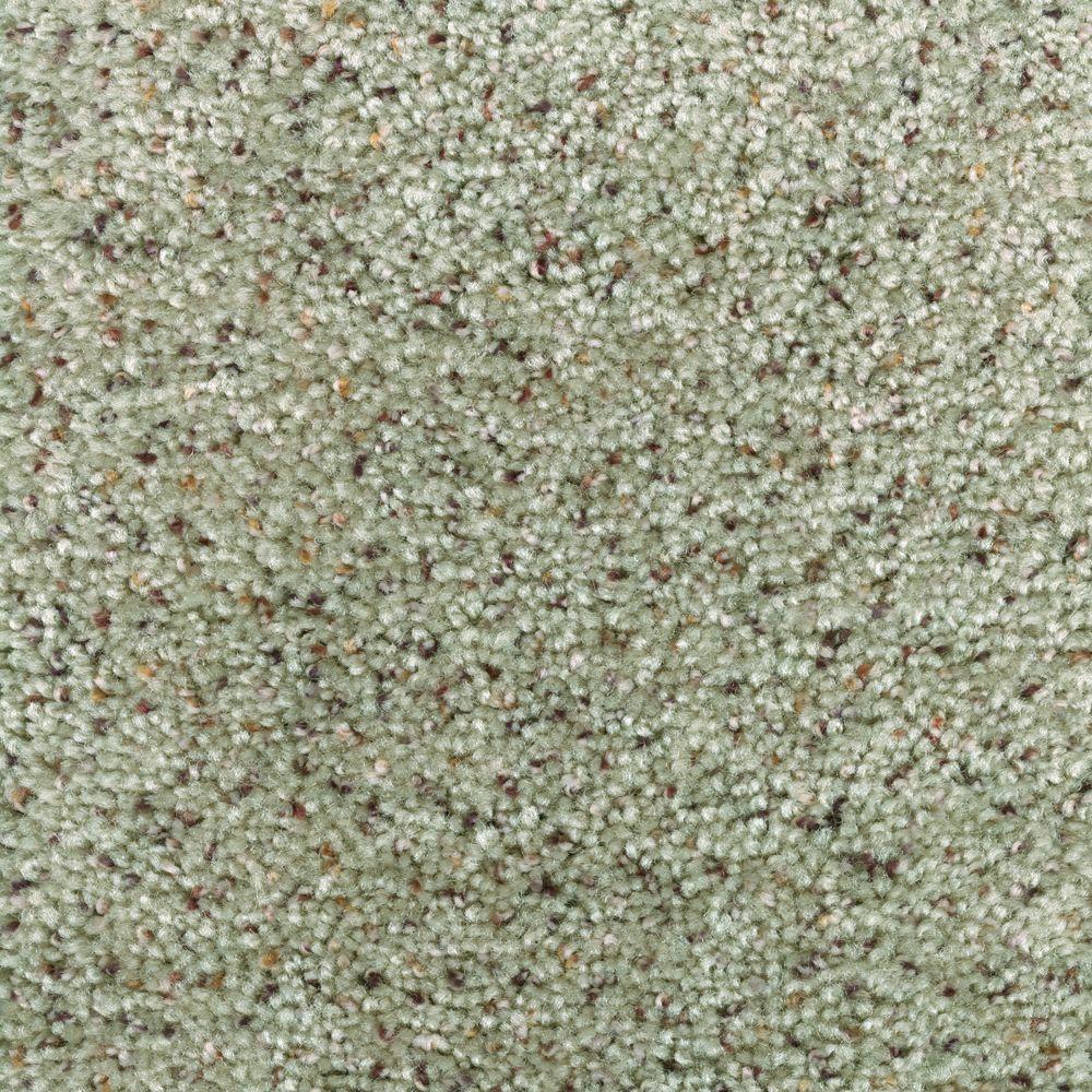 Stallion - Color Derby Textured 12 ft. Carpet
