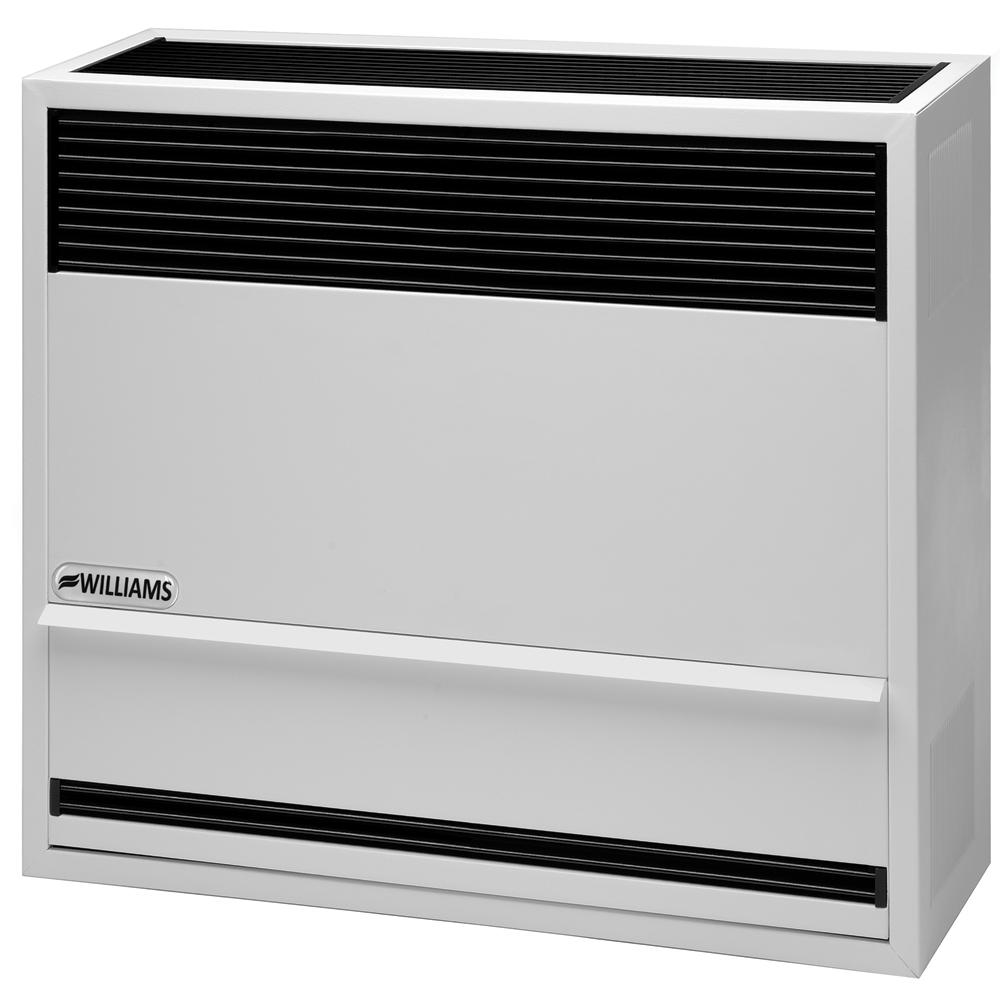 Williams 22,000 BTU/hr Direct-Vent Furnace LP Gas with Wall or Cabinet-Mounted