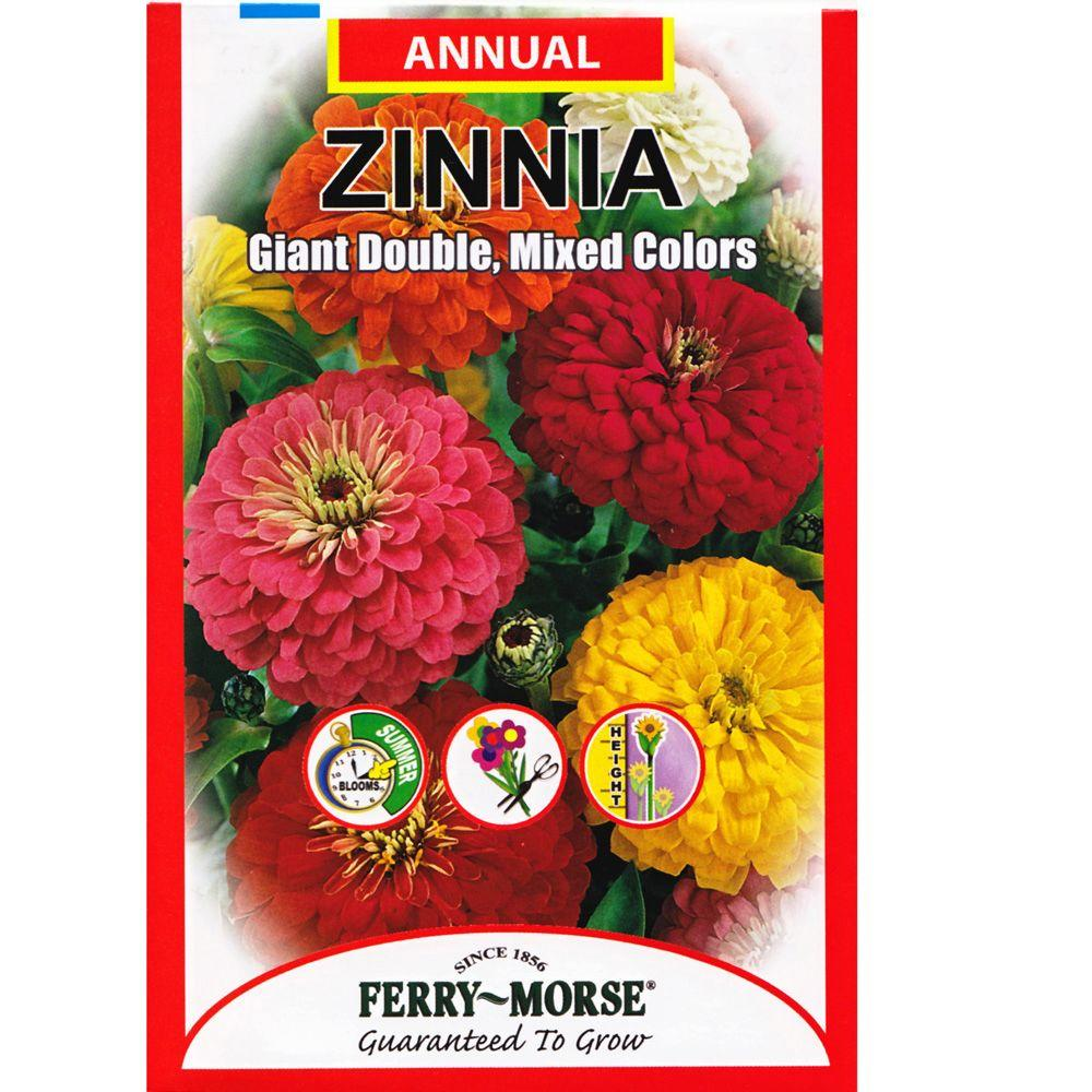 Ferry-Morse Zinnia Giant Double Mixed Color Seed