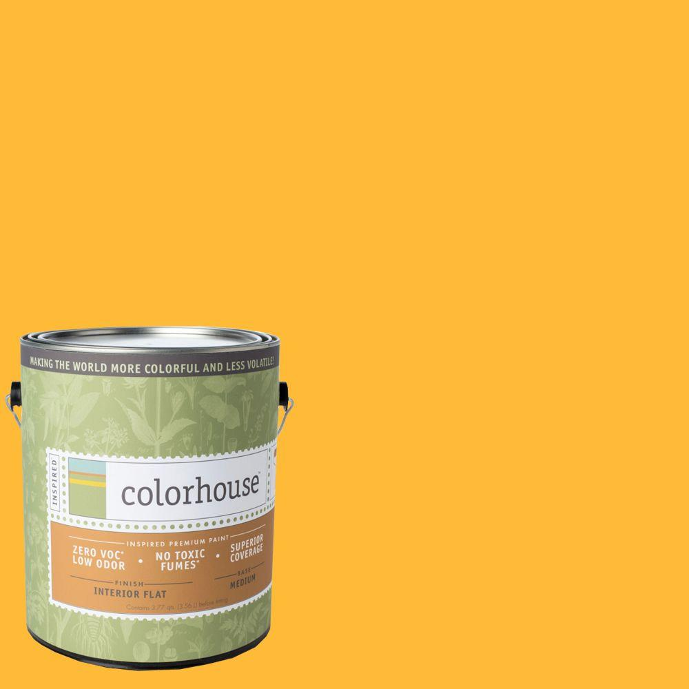 Colorhouse 1-gal. Aspire .06 Flat Interior Paint-481169 - The Home Depot