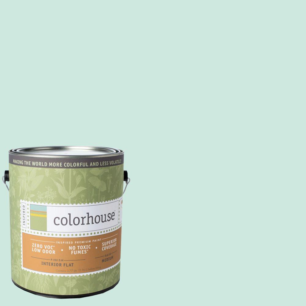 Colorhouse 1-gal. Water .01 Flat Interior Paint