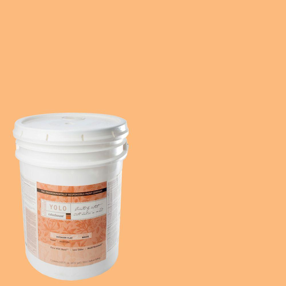 YOLO Colorhouse 5-gal. Sprout .02 Flat Interior Paint-DISCONTINUED