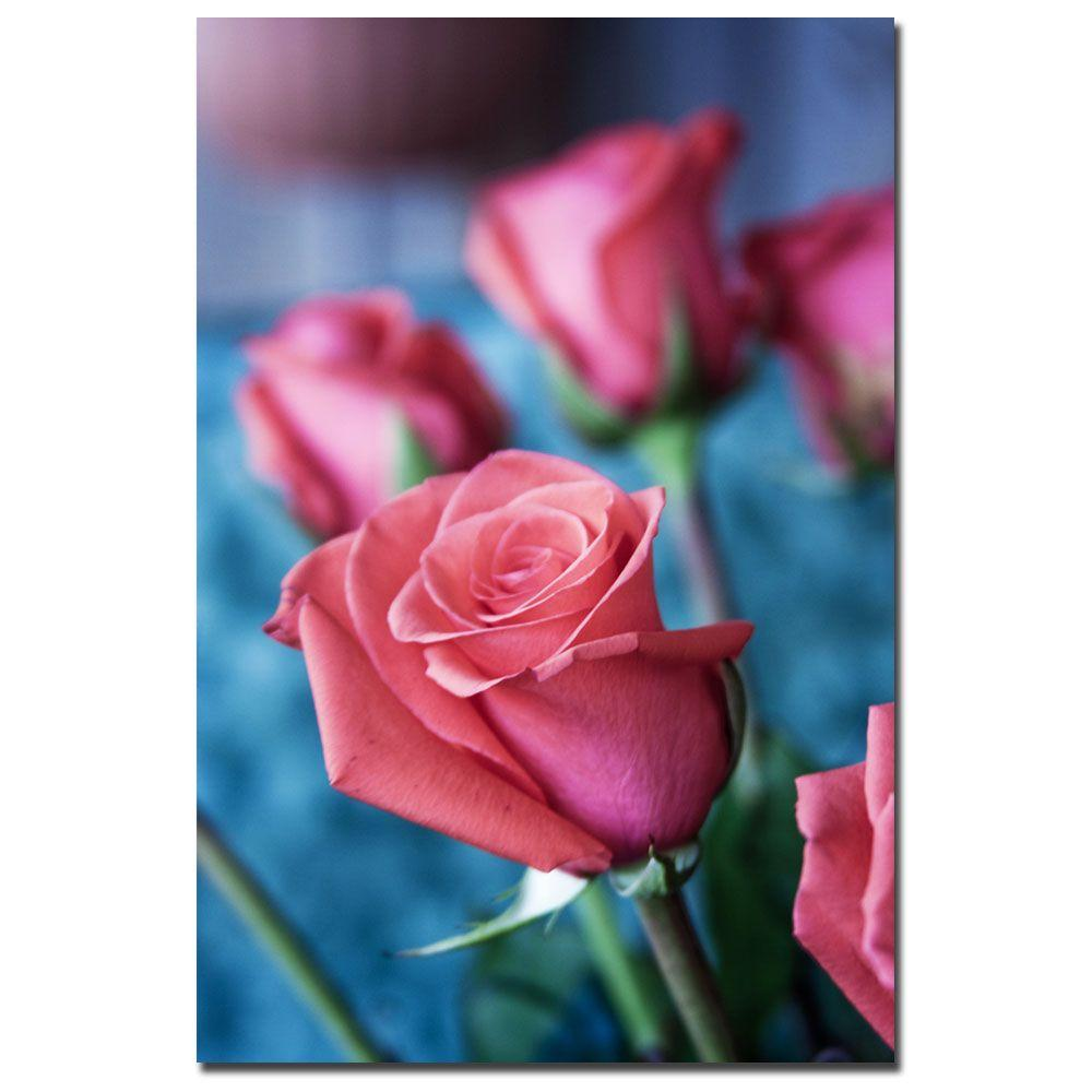 24 in. x 16 in. Pink Rose Canvas Art