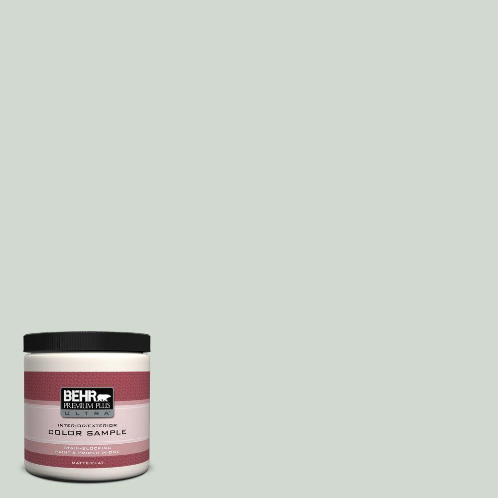 BEHR Premium Plus Ultra Home Decorators Collection 8 oz. #HDC-CT-23 Wind Fresh White Flat/Matte Interior/Exterior Paint Sample