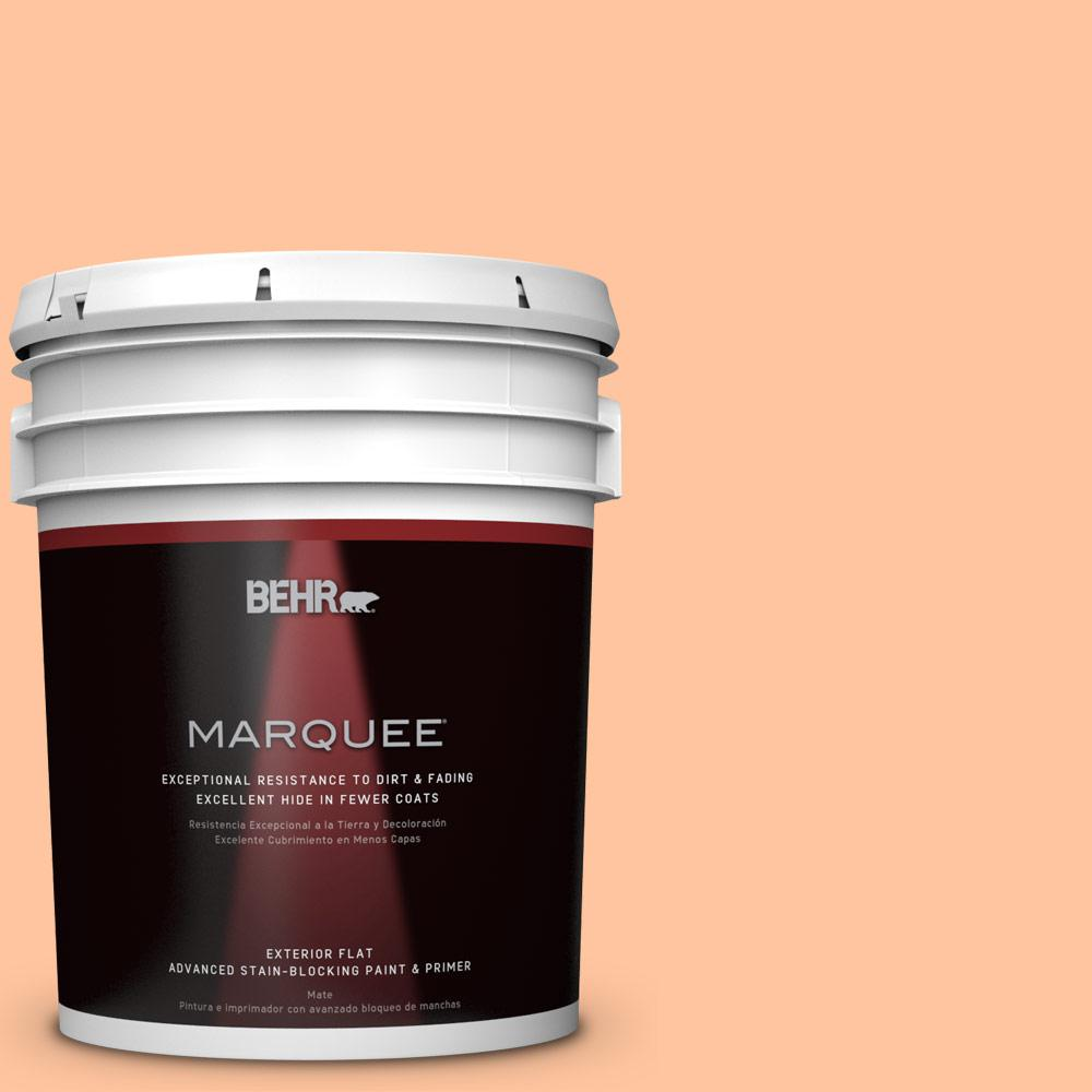 BEHR MARQUEE 5-gal. #P210-3 Gumdrops Flat Exterior Paint-445405 - The Home