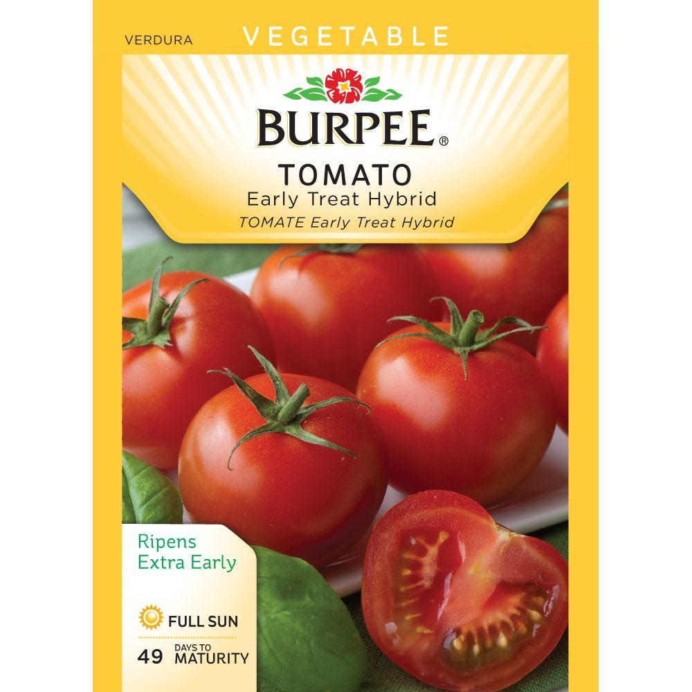 Burpee Tomato Early Treat Hybrid Seed-64658 - The Home Depot