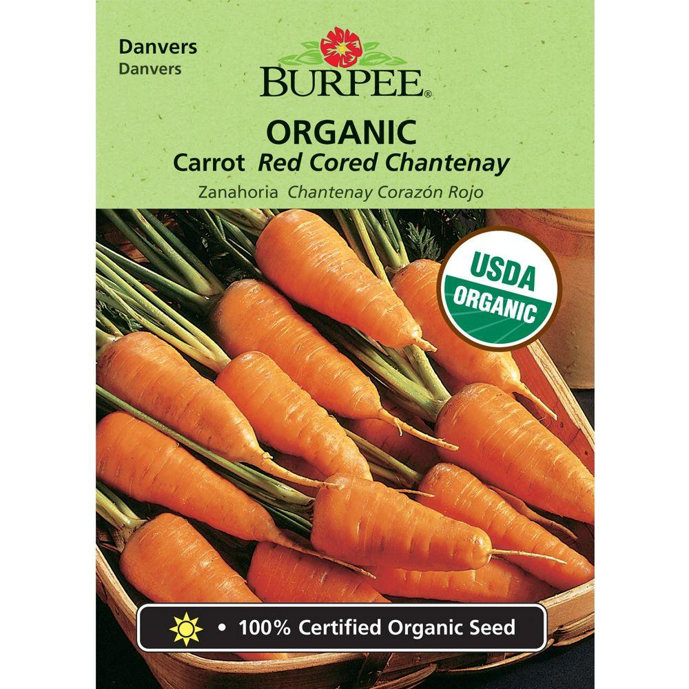 Burpee Carrot, Red Cored Chantenay Org-60874 - The Home Depot