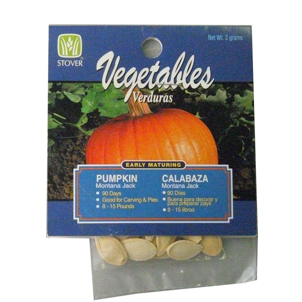Pumpkin Montana Jack Seed-78080-6 - The Home Depot