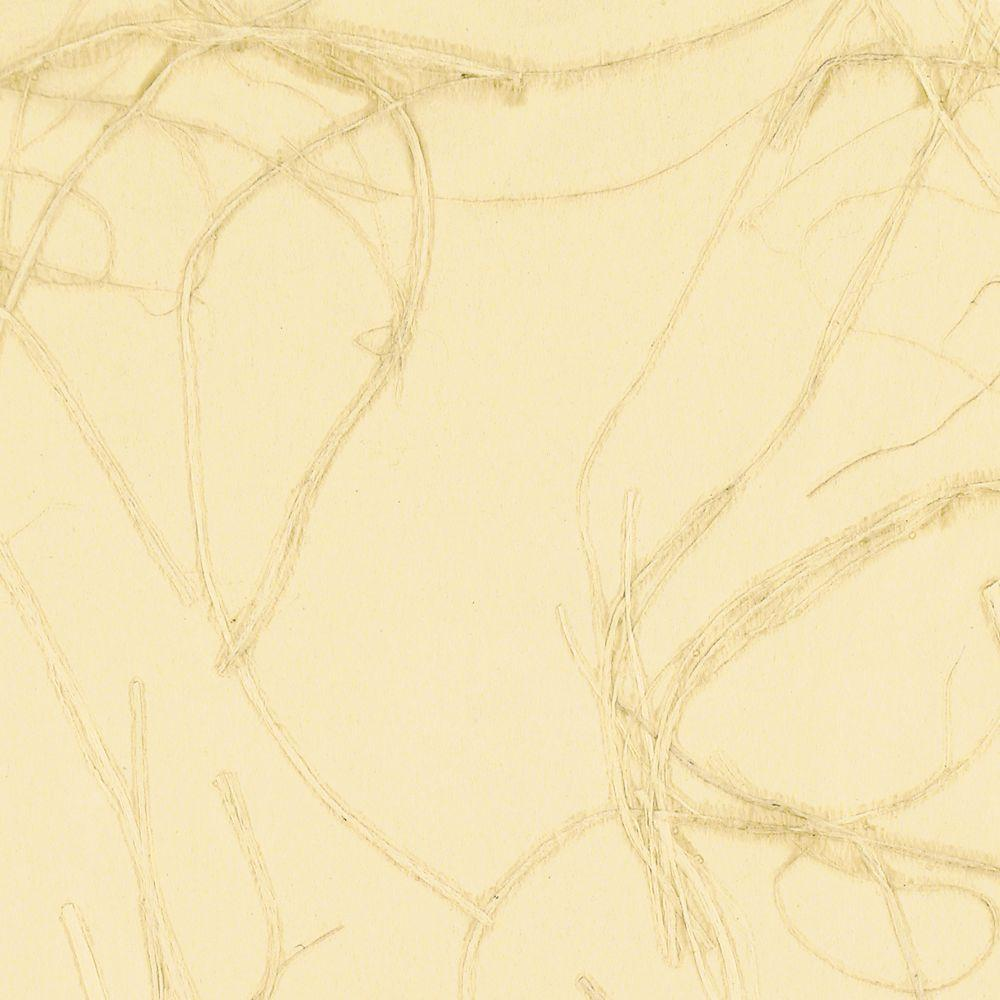 The Wallpaper Company 8 in. x 10 in. Beige Contemporary Swirl Grasscloth Wallpaper Sample-DISCONTINUED