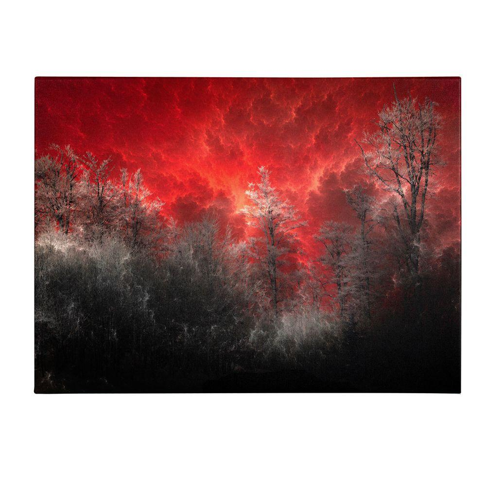 14 in. x 19 in. Hot and Cold Canvas Art