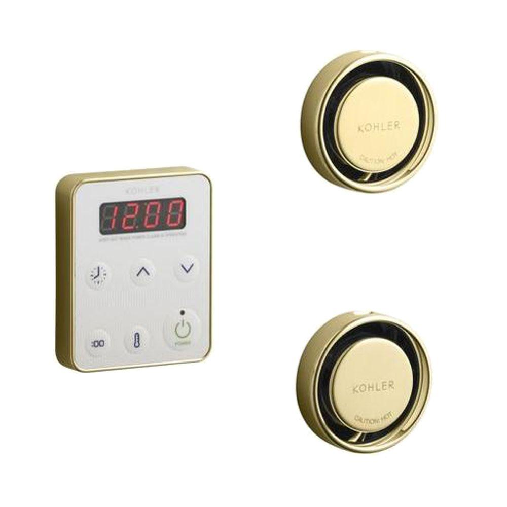 KOHLER Fast Response Wall-Mount Steam Bath Generator Control Kit in Vibrant Polished Brass