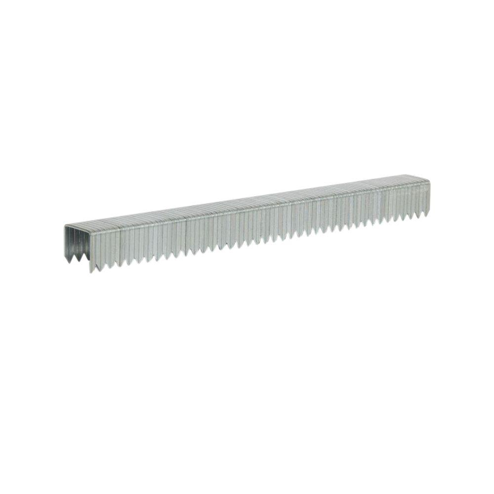 T50 Type 3/8 in. Leg x 3/8 in. Crown Galvanized Steel